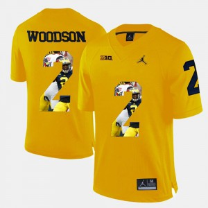 For Men's Charles Woodson Michigan Jersey Player Pictorial #2 Yellow 417244-184